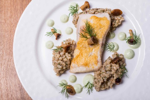 Catfish fillet, barley risotto, mushrooms, whole grain mustard sauce