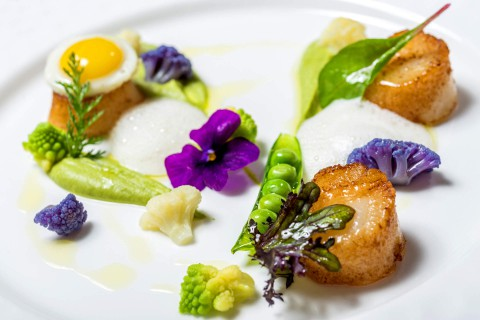 Saint Jacques scallops, green peas, mint, cauliflower, vichyssoise foam